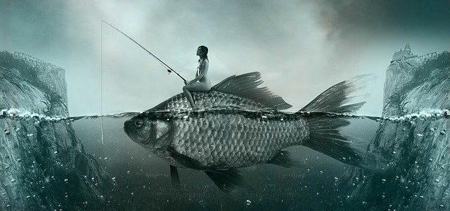 cara budidaya ikan air tawar